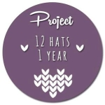 12 Hats, 1 Year Project